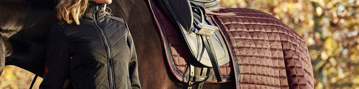 Olympia-Spotlight-Top-Image-Cool-Equestrian
